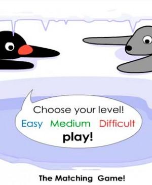 Selecciona tu nivel